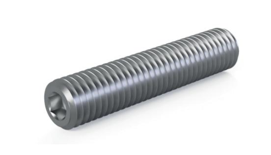 Digital rendering of Termate grub screw